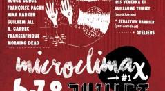 Microclimax : festivals et sécurité