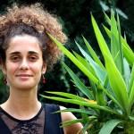 Fausta, ananas pop vocal