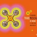 transmusicales-2013-sgbu