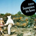 TWo-Bunnies-In-Love1