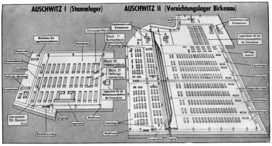 auschwitz_plan