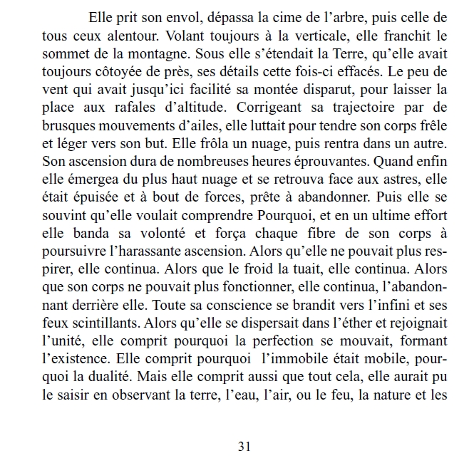 Siddartha-s-dragonfly_Pierre-Olivier-Caussarieu_page32