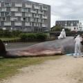 Nouvelle pêche au gros sur les quais rennais