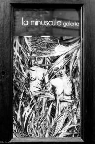 Sophie lecuyer. Camouflage. Minuscule galerie. Marché noir-15