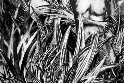 Sophie lecuyer. Camouflage. Minuscule galerie. Marché noir-17
