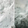 lucie-inland-imprimerie-nocturne-rennes-reverse-of-volume-yasuaki-onishi-champs-libres-festival-maintenant_exterieur-06-01