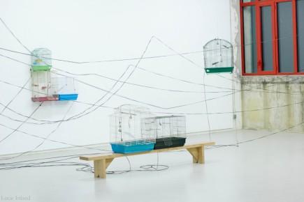 lucie_inland_imprimerie-nocturne-rennes-exposition-ruben-d-hers-cancion-muda-ateliers-du-vent_05