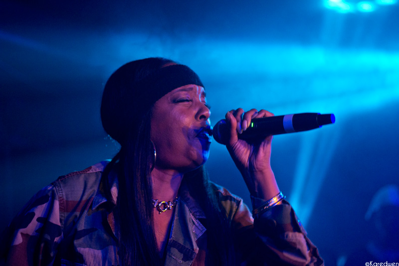 dooinit the artifacts rah digga prince waly rennes (2)