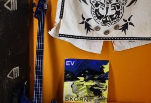 Expo Rock une histoire nantaise- E.V. - Franck Amouroux
