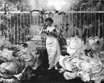 La fée aux choux, Alice Guy, 1901