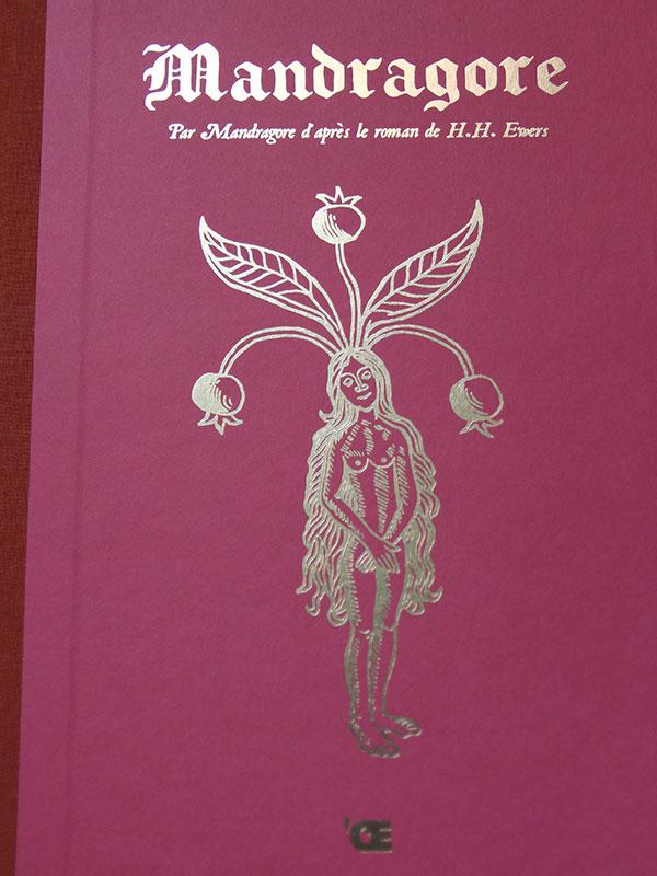 mandragore-bd