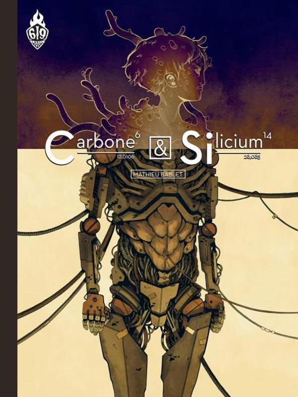 carbone-silicium